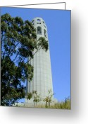 Pioneer Park Greeting Cards - Coit Tower Greeting Card by Douglas Barnett