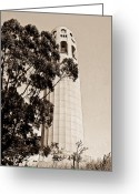 Pioneer Park Greeting Cards - Coit Tower San Francisco Greeting Card by Douglas Barnett