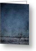 Country Prints Greeting Cards - Cold Outside Greeting Card by Larysa Luciw