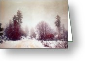 Winter Road Greeting Cards - Cold Road Greeting Card by Tara Turner