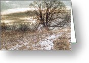 Gray Sky Greeting Cards - Cold Winter Morning Greeting Card by Randy Steele