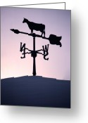 Weather Vane Greeting Cards - Cold Winter Sky Greeting Card by Lisa Knechtel