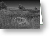 Storm Prints Greeting Cards - Colorado Field before a storm Greeting Card by Rob Outwater