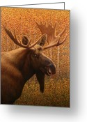 Western Painting Greeting Cards - Colorado Moose Greeting Card by James W Johnson