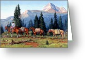 National Forest Greeting Cards - Colorado Outfitter Greeting Card by Randy Follis