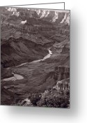 Warm Greeting Cards - Colorado River at Desert View Grand Canyon Greeting Card by Steve Gadomski