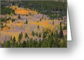 The Lightning Man Greeting Cards - Colorado Rocky Mountains Autumn Colors Greeting Card by James Bo Insogna