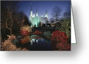 Sanctified Greeting Cards - Colored Lights Decorate Bushes Greeting Card by Karen Kasmauski