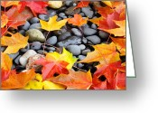 Red Autumn Trees Greeting Cards - Colorful Autumn Leaves prints Rocks Greeting Card by Baslee Troutman Fine Art Photography