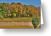 Suburbs Greeting Cards - Colorful Autumn Meadow Greeting Card by Deborah Smolinske