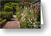 Pavement Greeting Cards - Colorful flower garden Greeting Card by Elena Elisseeva