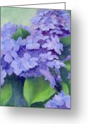 Sunflower Studio Art Greeting Cards - Colorful Hydrangeas Original Floral Art Greeting Card by K Joann Russell