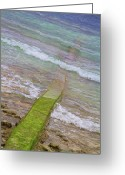 Cebucity Greeting Cards - Colorful Seawall Greeting Card by James Bo Insogna
