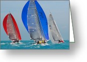 Sailing Fast Greeting Cards - Colorful Spinnakers Adorn Sailboats Greeting Card by Hibberd, Shannon