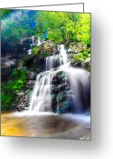 Virginia Pyrography Greeting Cards - Colorful Stream Greeting Card by Shane York