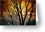Sunset Posters Greeting Cards - Colorful Sunset Silhouette Greeting Card by James Bo Insogna