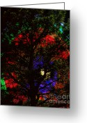 Storm Posters Greeting Cards - Colorful Tree Greeting Card by James Bo Insogna
