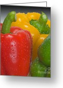 Eatable Greeting Cards - Colorful Trio Greeting Card by Susan Candelario