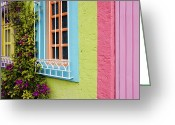 Mexican Flowers Greeting Cards - Colorful Walls Greeting Card by Jeremy Woodhouse
