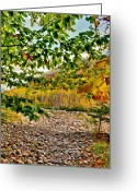 Saco River Greeting Cards - Colorful World Greeting Card by Geoffrey Bolte