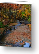 Pebbles Greeting Cards - Colors II Greeting Card by Robert Harmon