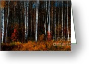 Calendar Greeting Cards - Colors of Fall Greeting Card by Jenny Rainbow