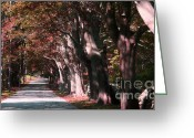 Autumn Photographs Greeting Cards - Colt Park Greeting Card by Tom Prendergast