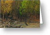 Mississippi River Scene Greeting Cards - Columbia Bottoms Slough Greeting Card by Greg Matchick