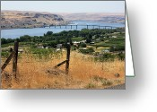 Barbed Wire Fences Photo Greeting Cards - Columbia River - Biggs and Maryhill State Park Greeting Card by Carol Groenen