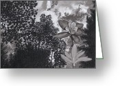 Sky.  Clouds Drawings Greeting Cards - Columbine Sky Greeting Card by Tyler Smith