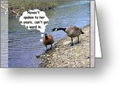 Talking Birds Greeting Cards - Comic Strip Greeting Card by Myrna Migala