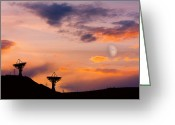 Sunset Posters Greeting Cards - Communication to Space  Greeting Card by James Bo Insogna
