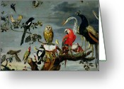 Wood Greeting Cards - Concert of Birds Greeting Card by Frans Snijders