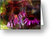 Cone Flower Greeting Cards - Cone Flower Beauties Greeting Card by J Larry Walker