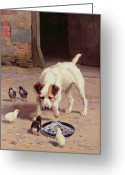 Feeding Painting Greeting Cards - Confrontation Greeting Card by Alfred Duke