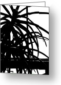 Franklin Park Conservatory Digital Art Greeting Cards - Conservatory Abstraction Greeting Card by Beth Akerman