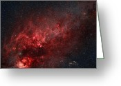 Molecular Clouds Greeting Cards - Constellation Cygnus With Multiple Greeting Card by Rolf Geissinger