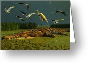 Everglades Greeting Cards - Contempt Greeting Card by Dieter Carlton