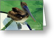 Bows Greeting Cards - Cool Footed Pelican Greeting Card by Karen Wiles