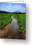 Tumbleweed Greeting Cards - Cool Mountain Stream Greeting Card by Robert Harmon