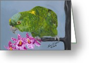 Amazon Parrot Greeting Cards - Cooper Greeting Card by Lana Tyler