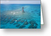 Structures Greeting Cards - Coral Reefs Seen During Spring Low Greeting Card by Mike Theiss