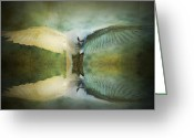 Layered Textures Greeting Cards - Corella Reflected Greeting Card by Kym Clarke