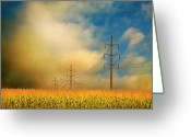 Electricity Greeting Cards - Corn Field At Sunrise Greeting Card by Photo by Jim Norris