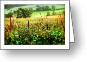 Cornfield Greeting Cards - Corn Field Greeting Card by Mal Bray
