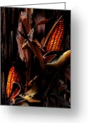Divine Greeting Cards - Corn Stalks Greeting Card by Rachel Christine Nowicki