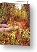 Split Rail Fence Greeting Cards - Corner Post Greeting Card by Pamela Patch