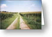 Dirt Road Greeting Cards - Cornfield After Harvest Greeting Card by Pam Ullman