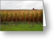 Americana Greeting Cards - Cornfield and Farmhouse Greeting Card by Frank Romeo