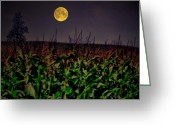 Cornfield Greeting Cards - Cornfield Moon Tree Greeting Card by Emily Stauring